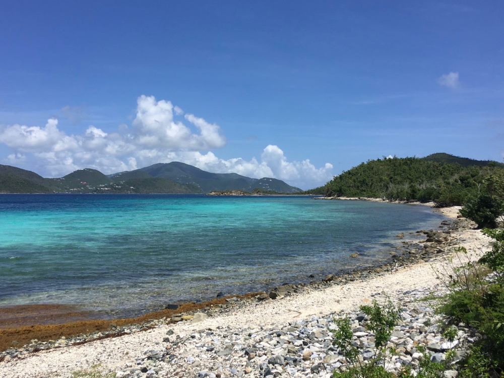 leinster bay september 2018